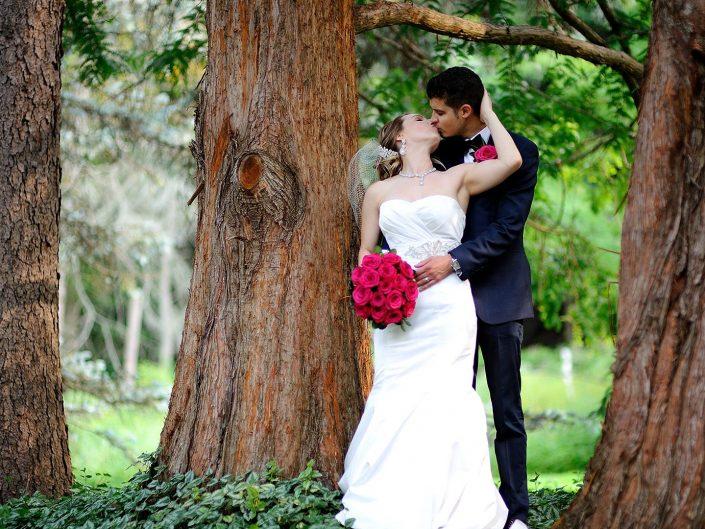 Katherine & David's Wedding